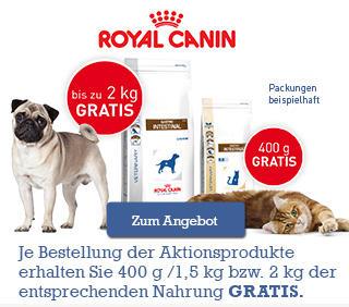 Royal Canin Gastro Intestinal Hund + Katze